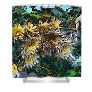 Beautiful Flowers In A Group Shower Curtain