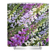 Beautiful Foxglove Shower Curtain