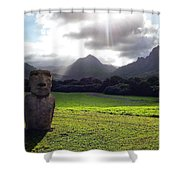 Beautiful Hawaii Shower Curtain