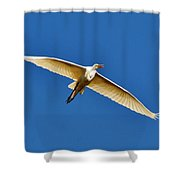 Beautiful Heron Shower Curtain