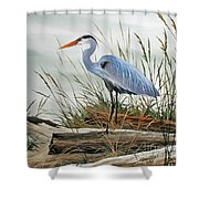 Beautiful Heron Shore Shower Curtain