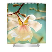 Beautiful Imperfections Shower Curtain by Louis Rivera