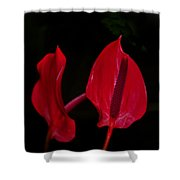Beautiful In Red Shower Curtain
