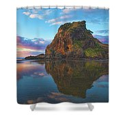 Beautiful Lion Shower Curtain