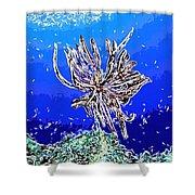 Beautiful Marine Plants 1 Shower Curtain