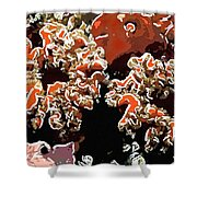 Beautiful Marine Plants 5 Shower Curtain