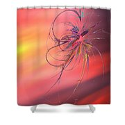 Beautiful Moment Shower Curtain