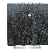 Beautiful Moon Shower Curtain