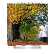 Beautiful Morning Walk In Autumn Shower Curtain