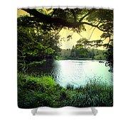 Beautiful Mountain Lake Shower Curtain