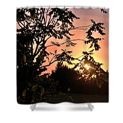 Beautiful Park Sunset View Trees Shower Curtain