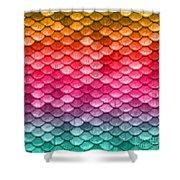 Beautiful Pastel Diagonal Rainbow Spectrum II Mermaid Fish Scales Shower Curtain
