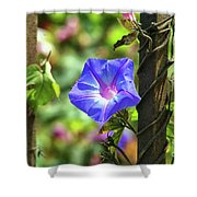 Beautiful Railroad Vine Flower Shower Curtain