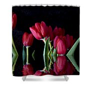 Beautiful Reflection Shower Curtain