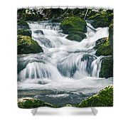Beautiful River In Forest Shower Curtain