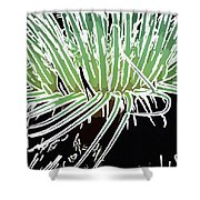 Beautiful Sea Anemone 3 Shower Curtain by Lanjee Chee
