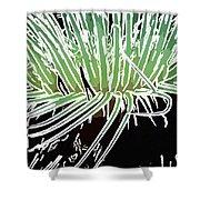 Beautiful Sea Anemone 3 Shower Curtain