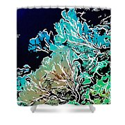 Beautiful Sea Fan Coral 1 Shower Curtain by Lanjee Chee