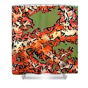Beautiful Soft Cora 1 Shower Curtain by Lanjee Chee