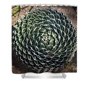 Beautiful Spiked Ball Plant Shower Curtain