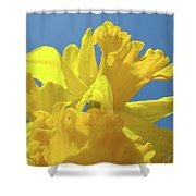 Beautiful Spring Daffodil Bouquet Flowers Blue Sky Art Prints Baslee Troutman Shower Curtain