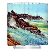 Beautiful Surf Shower Curtain
