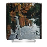 Beautiful Swans Moving In The River Path Shower Curtain