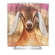 Beautiful Taffy Shower Curtain