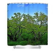 Beautiful Texas View 2 Shower Curtain
