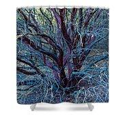 Beautiful Tree Shower Curtain