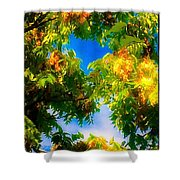 Beautiful Tree Tops In Sky Shower Curtain