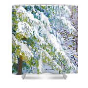 Beautiful Trees Covered With Snow In Winter Park Shower Curtain