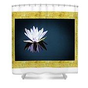 Beautiful Waterlilies Shower Curtain