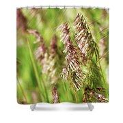 Beautiful Weeds Shower Curtain