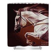 Beautiful White Running Horse 9iu Shower Curtain