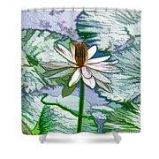 Beautiful White Water Lilies Flower Shower Curtain