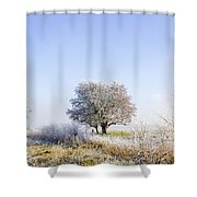 Beautiful Winter Background With Snow Tipped Trees Shower Curtain