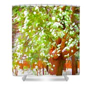 Beautiful Winter Tree Shower Curtain
