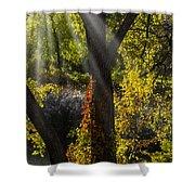 Beautiful Woodlands Shower Curtain