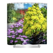 Beautiful Yellow Flowers On A Garden Background Shower Curtain