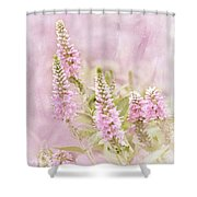 Beautilicious Shower Curtain