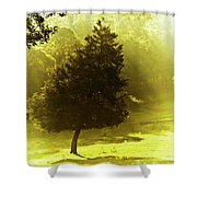 Beauty A Ray Makes Shower Curtain
