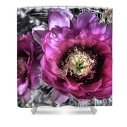 Beauty Among The Thorns Shower Curtain