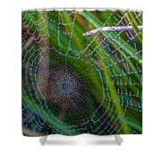 Beauty And Intricacy Shower Curtain
