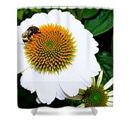 Beauty And The Bee #2 Shower Curtain
