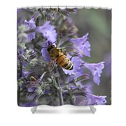Beauty And The Bee Shower Curtain