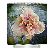 Beauty And The Boulder - Daylily Shower Curtain