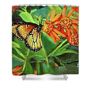 Beauty Attracts Shower Curtain