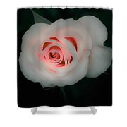 Beauty Comes From Within Shower Curtain