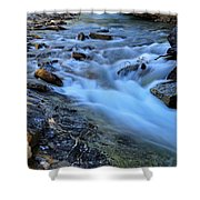 Beauty Creek Shower Curtain by Larry Ricker